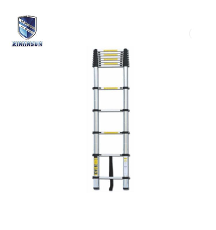 extenable ladder3