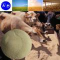 Additif alimentaire en poudre de protéine