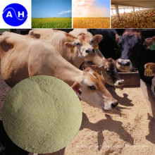 Ruminant Stomach Calcium Poultry