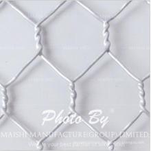 Maschendraht-Netz- / Vogel-Geflügel-Netz