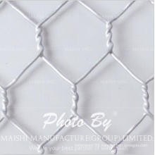 Chicken Wire Netting/Bird Poultry Net