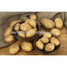 Bauernhof frische Kartoffel