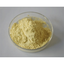 Lotus Leaf Extract High Quality