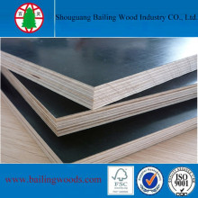 Best Price Shuttering Plywood for Construction
