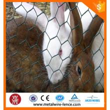 Galvanized Hexagonal wire netting/Hexagonal wire mesh/Chicken wire
