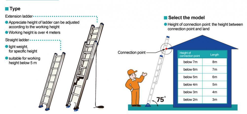Straight ladder choose