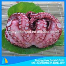 Unser Hauptausfuhrprodukt ist gefrorener gekochter Oktopus