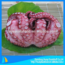 our main exporting product is frozen cooked octopus