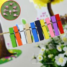Schöne hölzerne Wäscheklammern Holz klein mit Blume