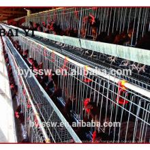 Huhn-Geflügel-Bauernhof-Ausrüstung für Schicht-Züchter-Schicht-Huhn