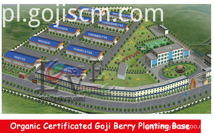 2017 New Crop Goji Berries supplier