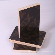 Black Film Faced Plywood para la construcción (contrachapado para muebles)