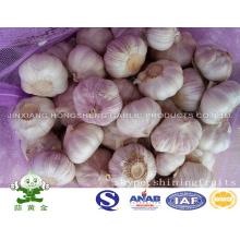 Red Garlic 5.0cm 10kgs Mesh Bag Packing for Sale