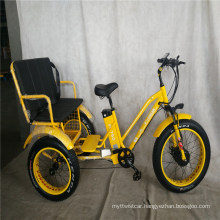 Fat Tire E Trike Electric Passenger Tricycle with Three Wheels