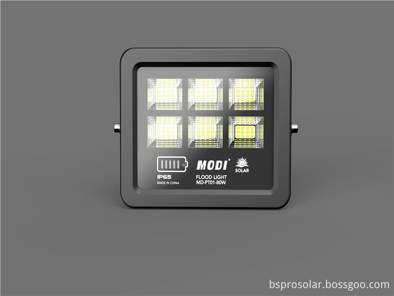 800 Lumen Solar Flood Light