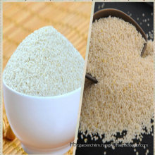 White Millet Seed for Bird Seeds or Human Consumption