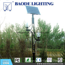 Luz de rua solar da turbina eólica do diodo emissor de luz de 8m Pólo 80W (BDTYN880-w)