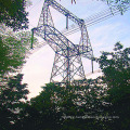 220kV Owl Type Line Angle Power Transmission Steel Tower