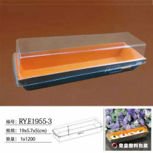 Plastic Blister Packing Plastic Packaging Box