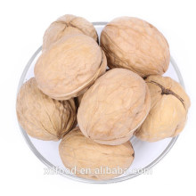 Walnut in shell ,Thin Skin Walnuts whole With Shell price