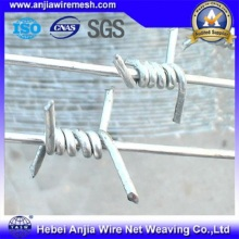 Electro Galvanized Barbed Wire Security Fencing