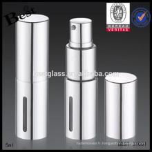 Bouteille en verre d'argent 5ml en aluminium pour le parfum, rouge à lèvres Bouteille en verre 5ml pour le parfum