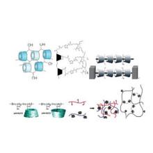 Copolímero de epicloridrina beta ciclodextrina