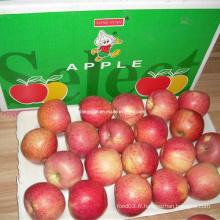 Pomme rouge Apple douce Qinguan