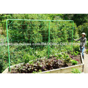 Vegetable Climbing Net, Green Color, 8g/m2 with 15*17cm, Supports to Climbing Plants or Vegetables