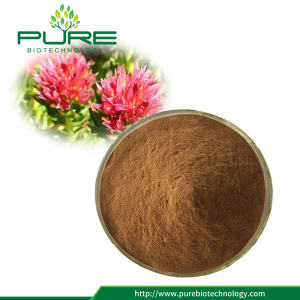 Herbal Rhodiola Rosea Extract for Immunity Enhancing