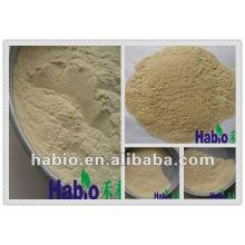 Polvo / líquido de xilanasa para grado de industria aditiva industrial / agente / químico
