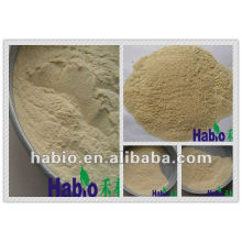 alimentação de aves de capoeira aditivo enzima xilanase