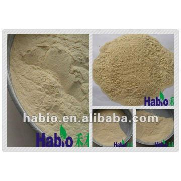 Poudre de Xylanase / liquide pour la catégorie industrielle d'additif / agent / produit chimique