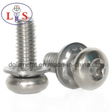 Ss 304 Torx Recess Pan Head Machine Screw