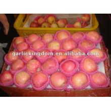 138-198 18кг свежее яблоко янтай-фуйи