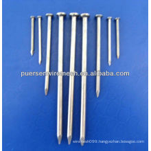 Common Iron Nail Bright Nails factory