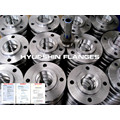 DIN 2565 2566 PN6 PN16 Threaded Screwed Flanges