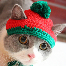 New Year Christmas Winter Pet Dogs Cats Knitted Hat