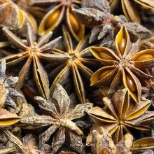 Óleo essencial de anis estrelado 30ml