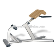 Commerical gym machinet chaise romaine
