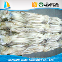 sell frozen squid head at low price