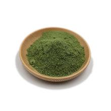 Organic Barley Grass Powder Bulk