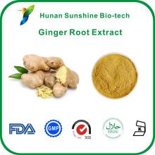 Чистый корень имбиря порошок хороший ингредиент для опухоли ингибирование