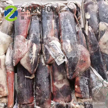 High Quality Frozen Equator Squid  Dosidicus Gigas Whole Round For Sushi