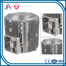 Customized Made Aluminium Die Casting Parts (SY1203)