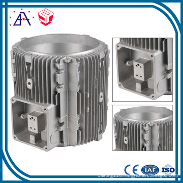 Customized Made Die Casting Engine Accessories (SY1196)