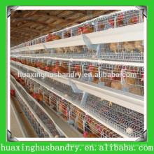 Gallinas de pollo del metal de la buena calidad del precio de fábrica para la venta