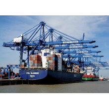 Shipping Agent Carriage Dangerous Goods Chemicals From China To Worldwide Sea Ports.