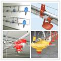 Полный набор высококачественных автоматических птицеводства оборудование для бройлеров