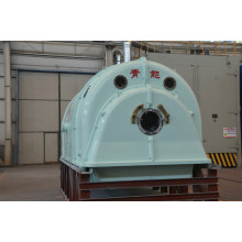 Generator Turbin Steam QNP